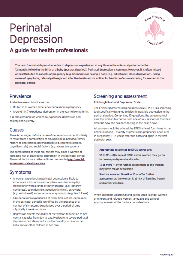 Factsheets for health professionals on perinatal depression